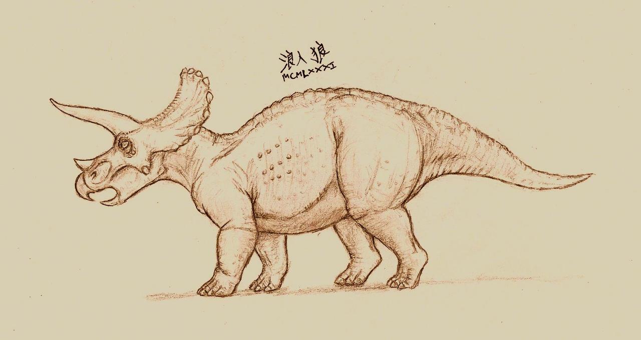 Triceratops horridus (2014 sketch)