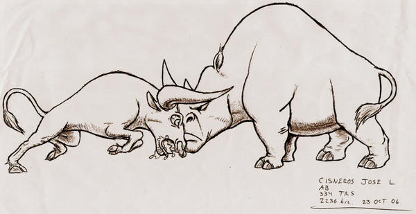 Bull vs. Rhino