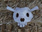 Skull Mask Finished!