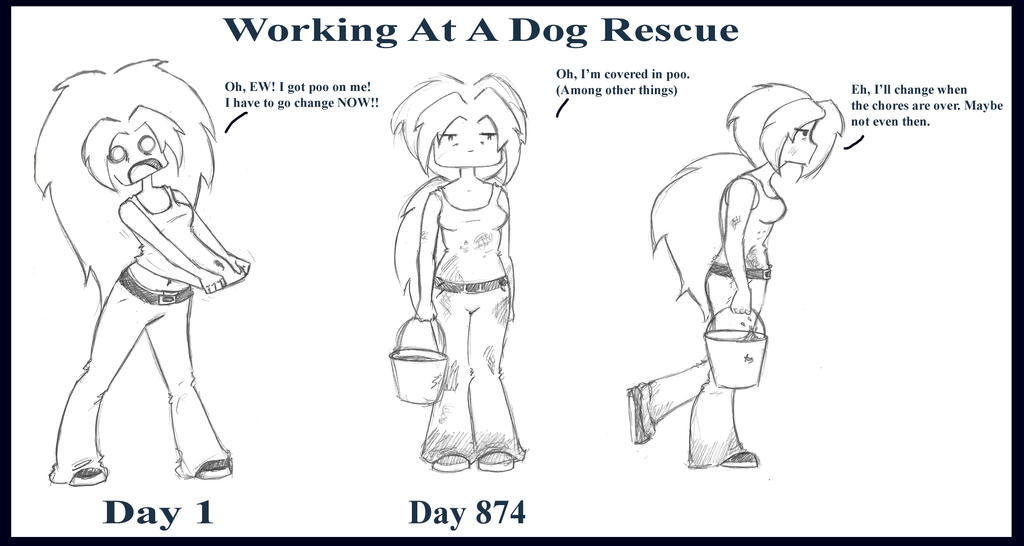 Realities of Working At A Dog Rescue 2 by meanlilkitty