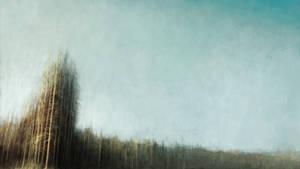 Forest II by lukpazera