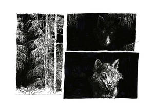 Untitled Sequence 1
