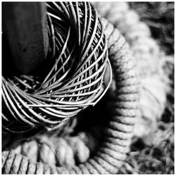 M221 :: Ring around by mr-MINTJAM