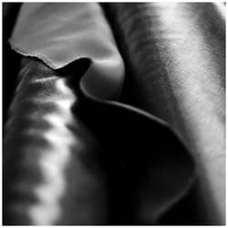 M224 :: Fabric roll by mr-MINTJAM