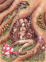 Mushrooms by Raenyras