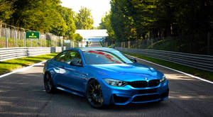 THE M4