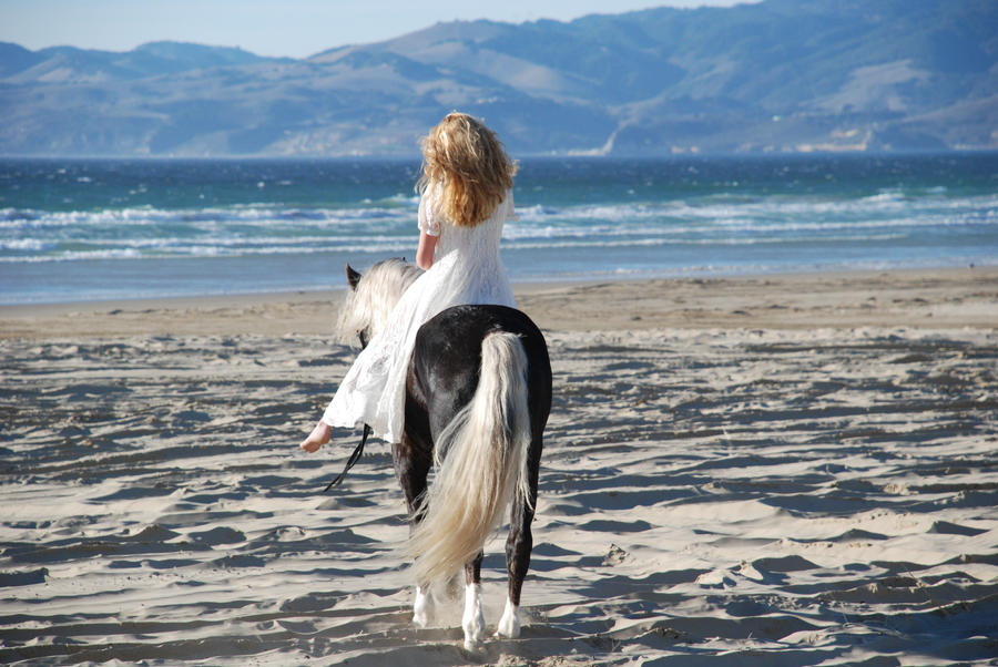 horseback riding on the beach by shiester99 on DeviantArt Horseback Riding On The Beach Photography