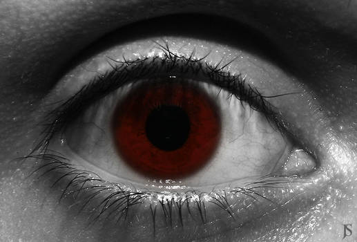 nulls eye