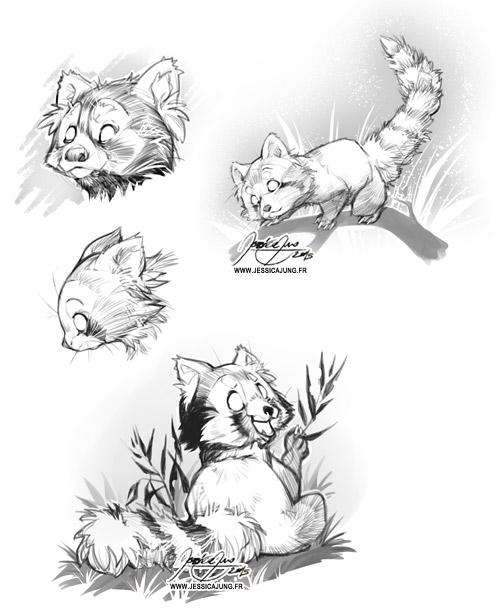 Red Panda - May Sketch by Miladymorigane