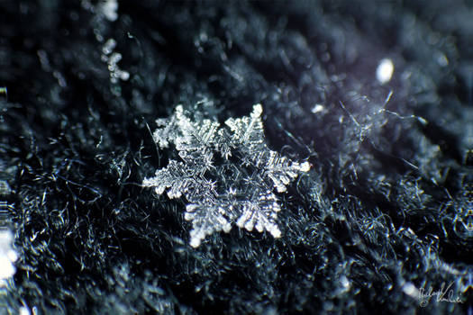 Snowflake II by MadMike27