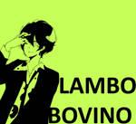 TYL lambo