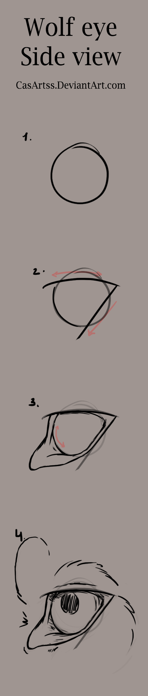 Wolf eye tutorial side view by casartss on deviantart wolf eye tutorial side view by casartss ccuart Image collections