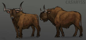 Concept Aurochs