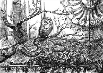 The Owl by Keldha