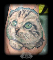 Cat by state-of-art-tattoo