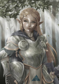 Armored Zelda
