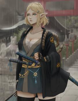 Zelda - Samurai