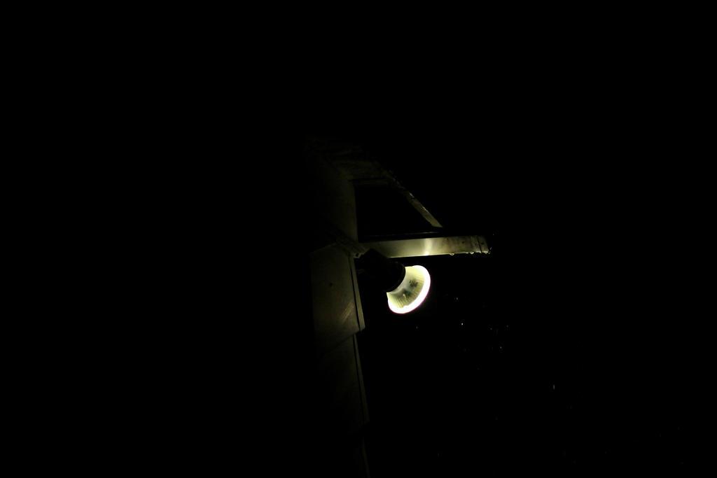 Light up by JacketBird