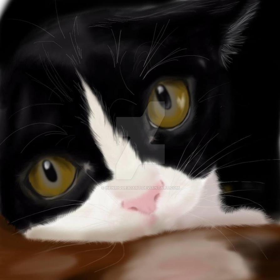 Cat by Henrique3DArt