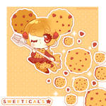 Doki Doki Chocolate Chip Cookie