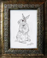 Bunny by Teru-teruMomiji