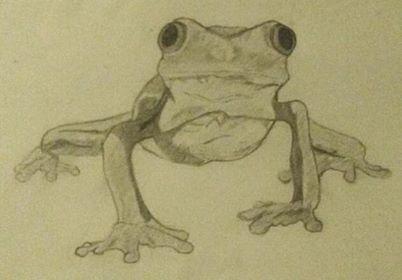 A Cool Little Treefrog by SweatpantsArt