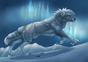 North Light by ImmatureGirl