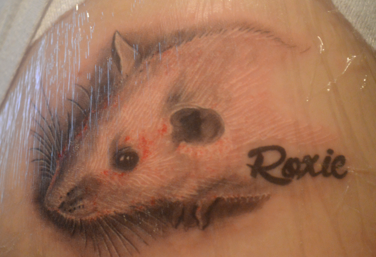 In memory of roxie my first tattoo by angi shy on deviantart for What should my first tattoo be