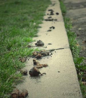A poop line OMG