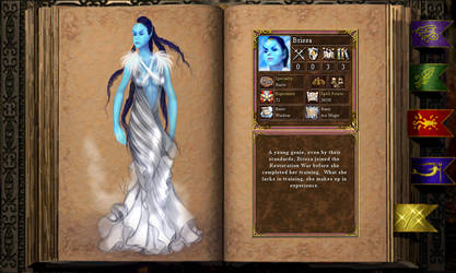 Brissa  the elementalist full outfit
