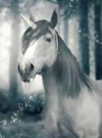 Unicorn - Commission Work