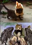 kittens2 by FiestaTB