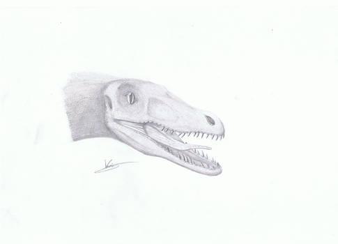 Velociraptor crane