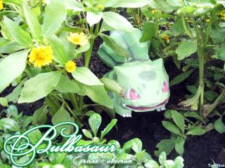 Bulbasaur - Grass pokemon by Toshikun