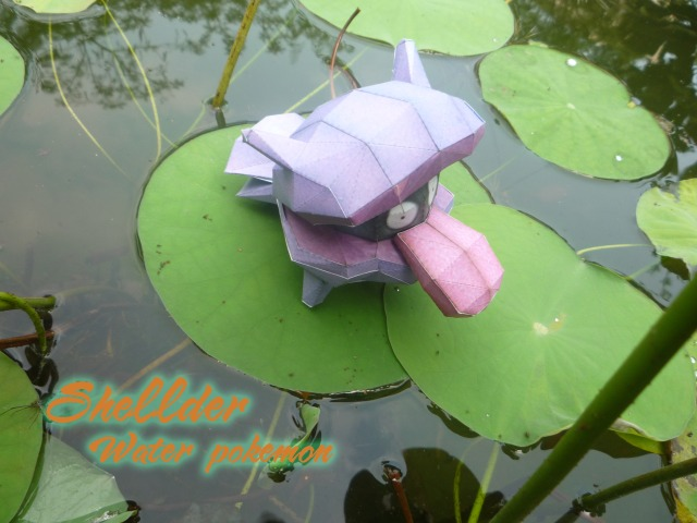 Shellder - Water pokemon by Toshikun
