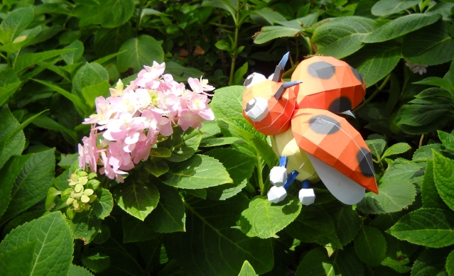 Ledyba with flowers and sun by Toshikun