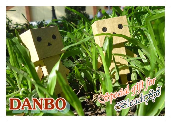 Danbo by Toshikun