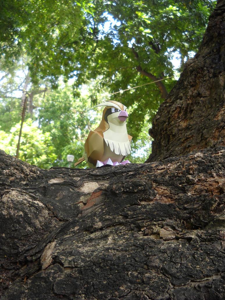 Pidgey - Guardian by Toshikun