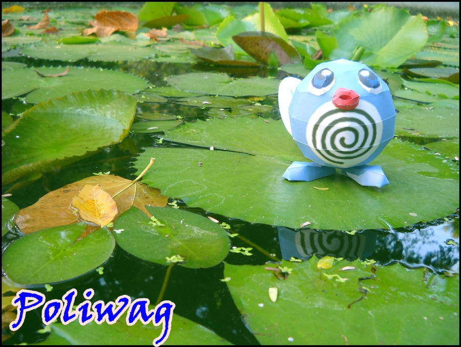 I found poliwag :D by Toshikun