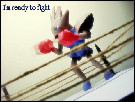 Hitmonchan - I'm ready to fight