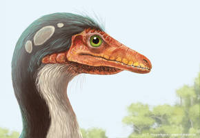 Compsognathus longipes by bildbauer