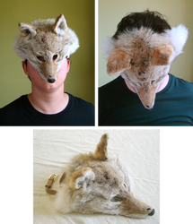 Light Coyote Mask (for sale)