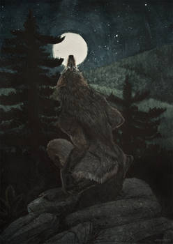 Evening Howl Master Study