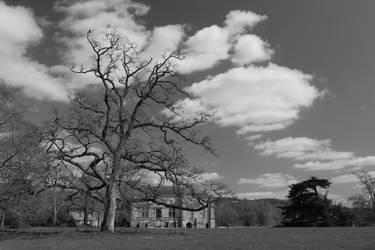 Lacock Abbey by sezmeralda
