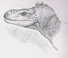 Dromaeosaurus albertensis by Raptor-dude
