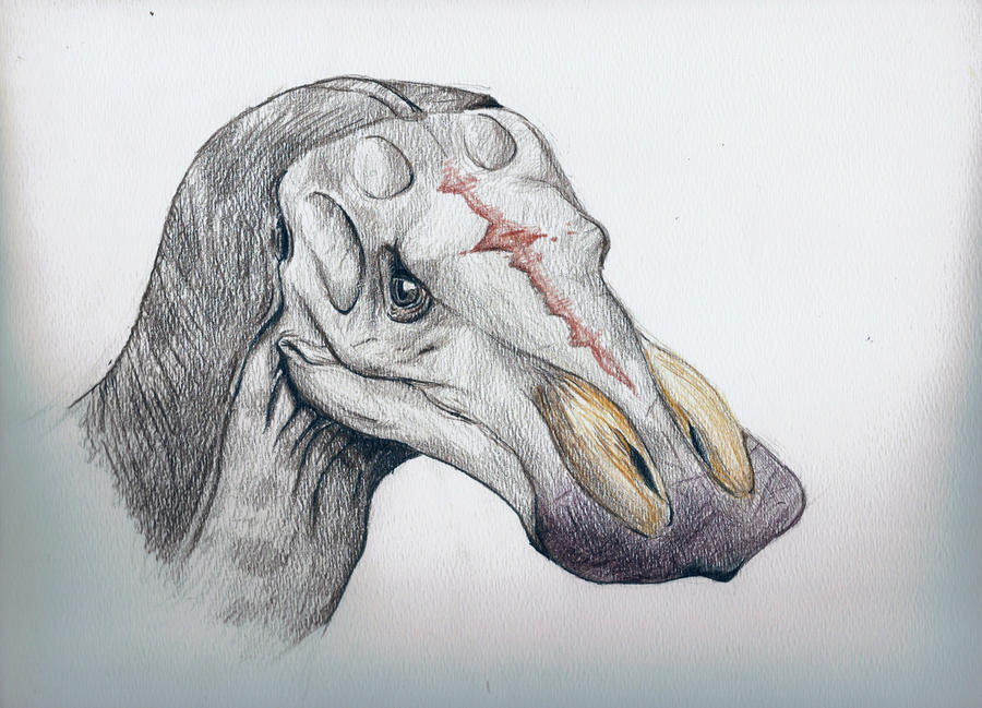 Male Anatotitan by Raptor-dude