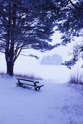winter bench2 by conceptually