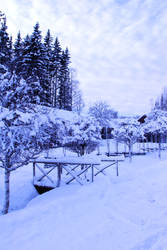 winter bridge stock 4