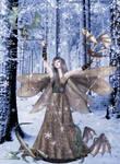 Dragon Fairies Winter Outting