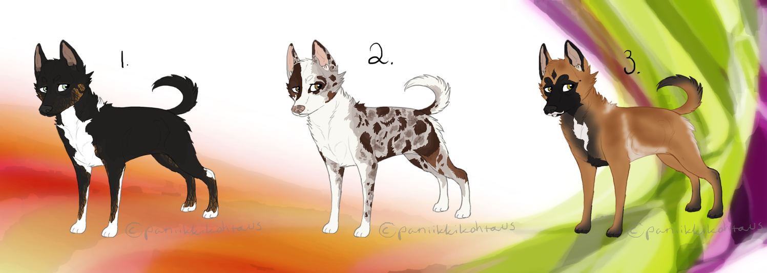 Dog adoptables patch 2 for points :1 LEFT OPEN: by paniikkikohtaus